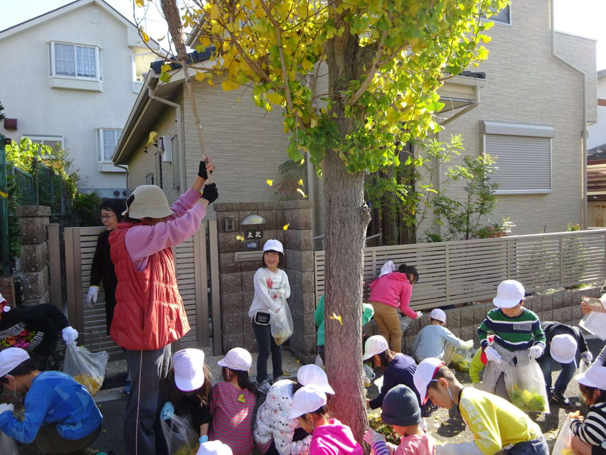 イチョウ並木の落葉清掃と焼き芋大会